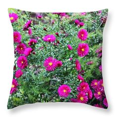 Larissa Antonova.charm Of Summer By Larissa Antonova. Red Asters Throw Pillow featuring the photograph Charm Of Summer by Larissa Antonova #LarissaAntonovaFineArtPhotography #Flowers #Red #Green #Pillow #Cushion #HomeDecor