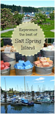A Salt Spring Island Getaway. Near Victoria, BC on Vancouver Island, Salt Spring Island is a unique destination one should explore. Use these tips and tricks to get the most out of your visit. Lanai Island, Island Beach, Big Island, Salt Spring Island Bc, Best Island Vacation, Maui Vacation, Beach Vacations, Vacation Destinations, Vacation Spots