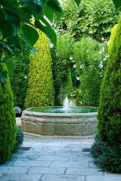 My secret garden ! Love this fountain, walkway and trees to keep it private! Love love love