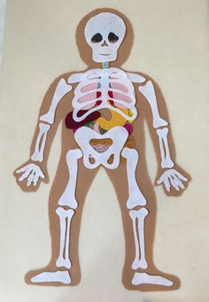 My Body, Make this Educational Felt Set with Bones and Organs, Montessori Inspired Educational Scien Science Toys, Science Fair, Human Body Activities, Preschool Activities, Anatomy Bones, Felt Stories, Fabric Markers, Science Projects, Bodies