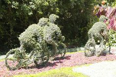 Topiary Cyclists