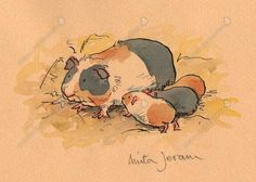 Original artwork by children's book illustrators and beautiful children's books, available to buy online and in our Bedford gallery shop. Hamsters, Rodents, Anita Jeram, Children's Book Illustration, Book Illustrations, Evans Art, Pig Art, Children's Picture Books, Guinea Pigs