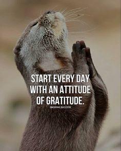 Success quotes, life quotes, attitude of gratitude quotes, gratitude quotes thank Best Positive Quotes, Great Quotes, Inspirational Quotes, Attitude Of Gratitude Quotes, Gratitude Quotes Thankful, Meaningful Quotes, Wisdom Quotes, Quotes To Live By, Me Quotes