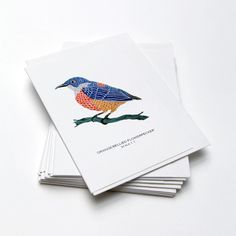 Small Bird Card Set
