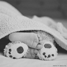 adorable baby photo idea - baby feet with teddy bear feet.  I just love this!!! Look at those adorable feet!! Love babies