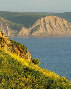 Visitor Information | Point Reyes National Seashore Association
