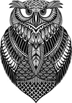 OWL vector handdrawn illustration stock photo