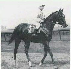 Whirlaway - had a habit of drifting toward the middle of the track during the latter part of races, losing as a result. Trainer Ben Jones used a full blinker over the colt's right eye for workouts, his jockey was able to keep his path straight, and they won the 1941 Kentucky Derby by 8 lengths.