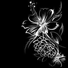 Illustrazione stock 155051033 a tema Flowers Drawn Chalk On Old Paper Black White Art, White Ink, Black Background Painting, Flowers Black Background, Papier Kind, Black Canvas Paintings, Black Paper Drawing, Scratchboard Art, Wreath Drawing