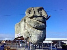 Australia is famous for being big, but the countries size is just the beginning. Check out these BIG roadside attractions that make travelling in Australia extra interesting.