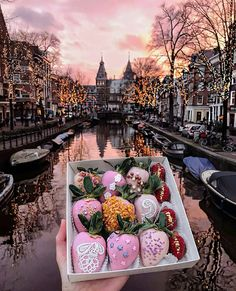 Amsterdam is the capital city of the Netherlands. It is understood throughout the world as one of the greatest small cities in the world. Tour En Amsterdam, Amsterdam Travel, Amsterdam Winter, Amsterdam Fashion, Amsterdam Canals, Places To Travel, Travel Destinations, Places To Go, Travel Around The World