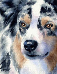 AUSTRALIAN SHEPHERD 4 Contemporary Watercolor ART 11 x 14 Print by Artist DJR