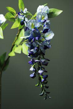 Blauwe regen http://kunstbloemenennaaldhakken.nl/product/blauwe-regen/