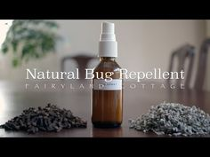 Natural Zero Waste Bug Repellent - Fairyland Cottage
