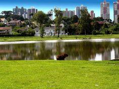 Parque Barigui, Curitiba-Paraná