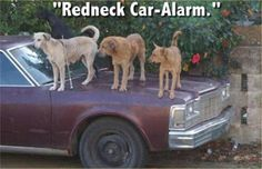 Red Neck car alarm