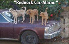 Red Neck car alarm