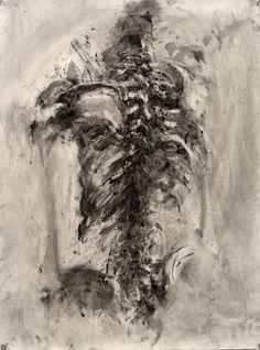 exploring the human skeleton focusing on the rib cage - Art interests Skeleton Drawings, Skeleton Art, Human Skeleton, Ap Drawing, Rib Cage Drawing, Illustrations, Illustration Art, Decay Art, Skulls