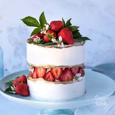 Erdbeer Bug Cake Tutorial + Video Zuckerkuchen-Show Strawberry Bug Cake Tutorial + Video Sugar Cakes Show Pretty Cakes, Cute Cakes, Beautiful Cakes, Amazing Cakes, It's Amazing, Amazing Women, Food Cakes, Cupcake Cakes, Cookie Cakes