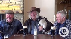 Ten best ways to become more authentically Irish in America - IrishCentral.com I'd love anyone would bring a sheep to a pub.