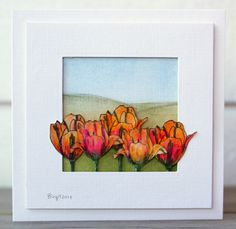 CAS268 Tulips by Biggan - Cards and Paper Crafts at Splitcoaststampers