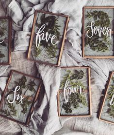 vintage frame wedding table numbers with pressed greenery wedding decor 27 Inspiring Wedding Table Number Ideas for 2019 Our Wedding, Dream Wedding, Perfect Wedding, Wedding Ceremony, Wedding Blog, Wedding Seating, Wedding Receptions, Wedding Place Names, Wedding Menu