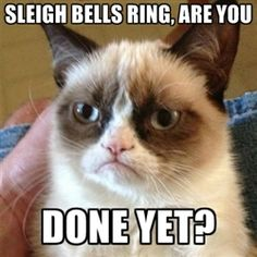 Grumpy Cat 1 - sleigh bells ring, are you done yet?