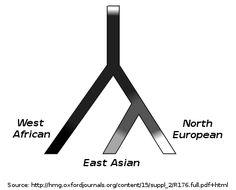 Human skin color - Wikipedia