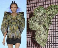 THE INSPIRATION BEHIND ALEXANDER MCQUEEN SPRING 2010 are Moths Butterfly Fashion, Butterfly Dress, Alexander Mcqueen, Mcqueen 3, Atlantis, Runway Fashion, High Fashion, Timeless Fashion, Fashion Art