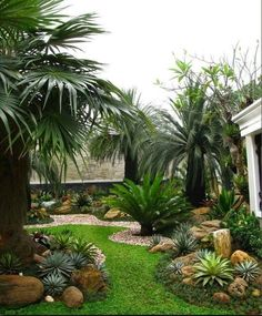 Front Yard Landscaping Ideas For Your Beautiful Garden You'll Love. 50 Creative Front Yard Landscaping Ideas and Garden Designs for Love. 50 Creative Front Yard Landscaping Ideas and Garden Designs for Florida Landscaping, Tropical Landscaping, Front Yard Landscaping, Landscaping Ideas, Palm Trees Landscaping, Mulch Landscaping, Florida Gardening, Succulent Landscaping, Tropical Garden Design