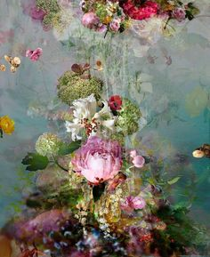 Isabelle Menin - Sinking #3 - Floral still life contemporary Photography | 1stdibs.com