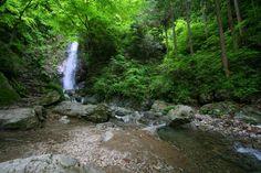 Hossawanotaki Tokyo  東京都西多摩郡 檜原村本宿 払沢の滝