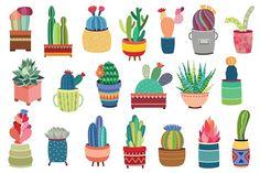 20 Succulents & Cactus Vector / PNG - Illustrations