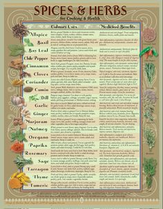 Spice & Herb Kitchen Chart