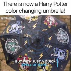 51 ideas for funny harry potter gifts nerd Harry Potter Colors, Theme Harry Potter, Harry Potter Jokes, Harry Potter Fandom, Harry Potter Gadget, Harry Potter Clothing, Harry Potter Stuff, Harry Potter House Quiz, Harry Potter Spells