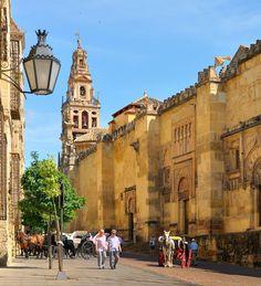 The street running alongside de Mezquita de Cordoba is Calle de Torrijos in Barrio de la Juderia, Cordoba, Andalucía_ Spain
