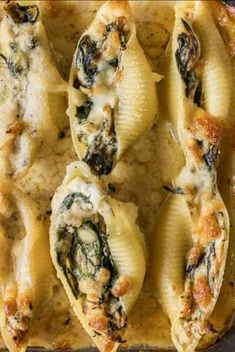 Chicken Stuffed Shells, Spinach Stuffed Shells, Spinach Ricotta, Spinach And Cheese, Easy Meals For Kids, Easy Snacks, Sauce Recipes, Pasta Recipes, Lunch Recipes