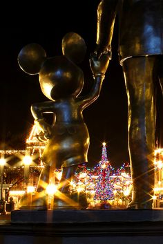 A stunning Christmas photo-- it would be a dream come true if I finally got to go to Disney for Christmas!