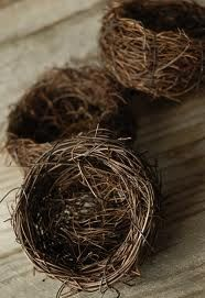 how to make a bird nest - Google Search