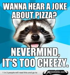 Lame Pun Coon: Wanna hear a joke about pizza?...