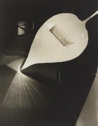 György Kepes  Leaf and Prism c. 1939–40