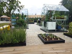 The RHS Kitchen Garden was designed as an accessible garden, with smooth, wide paths that allow access for wheelchairs so that everyone can enjoy the garden. Growing Plants, Growing Vegetables, Rhs Hampton Court, Potager Garden, Flower Show, Wonderful Places, Vegetable Garden, Paths, Wheelchairs