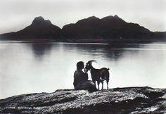 Bukk i solnedgang Foto: Louise Engen Mountains, Nature, Travel, Naturaleza, Viajes, Trips, Off Grid, Natural, Mother Nature
