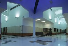 Van Alstyne High School, Texas  Fritztile Terrazzo Tile Flooring