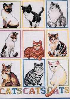 Counted Cross Stitch Kits of Cats Kitty Pattern by TucsonTiques