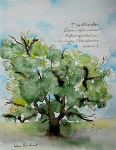 Old Oak Tree watercolor painting with Bible Verse