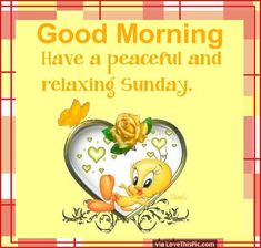 Good Morning Have A Peaceful Sunday tweety bird tweety good morning sunday sunday quotes good morning quotes happy sunday sunday quote happy sunday quotes good morning sunday