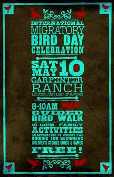 Evento de Día Internacional de las Aves Migratorias en Steamboat Springs, Colorado, E.E.U.U.  International Migratory Bird Day event in Steamboat Springs, University of Colorado Boulder  #BirdDay