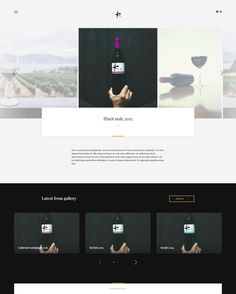 Website for winery Information Age, Create Website, Long Distance, Online Marketing, Wordpress, Presentation, Told You So, Branding, Wine
