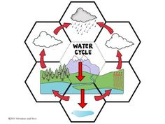 Water cycle- Science Interactive Notebook foldable notebook The Water Cycle Interactive Science Notebook {foldables} Science Notebook Rubric, Science Notebooks, Interactive Notebooks, Science Notes, Science Lessons, Science Activities, Weather Activities, Science Experiments, Science Classroom